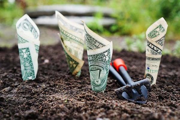 Venture-Funded Medicare Advantage Plans Launch into 2019 Market