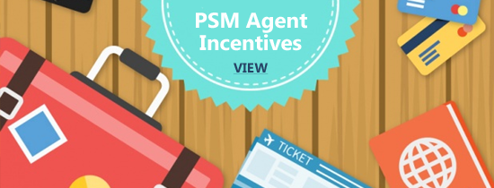 PSM Agent Incentives-1.png